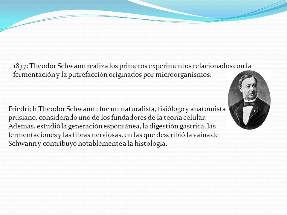 1837: Theodor Schwann realiza los primeros experimentos relacionados con la fermentación y la putrefacción originados por microorganismos.