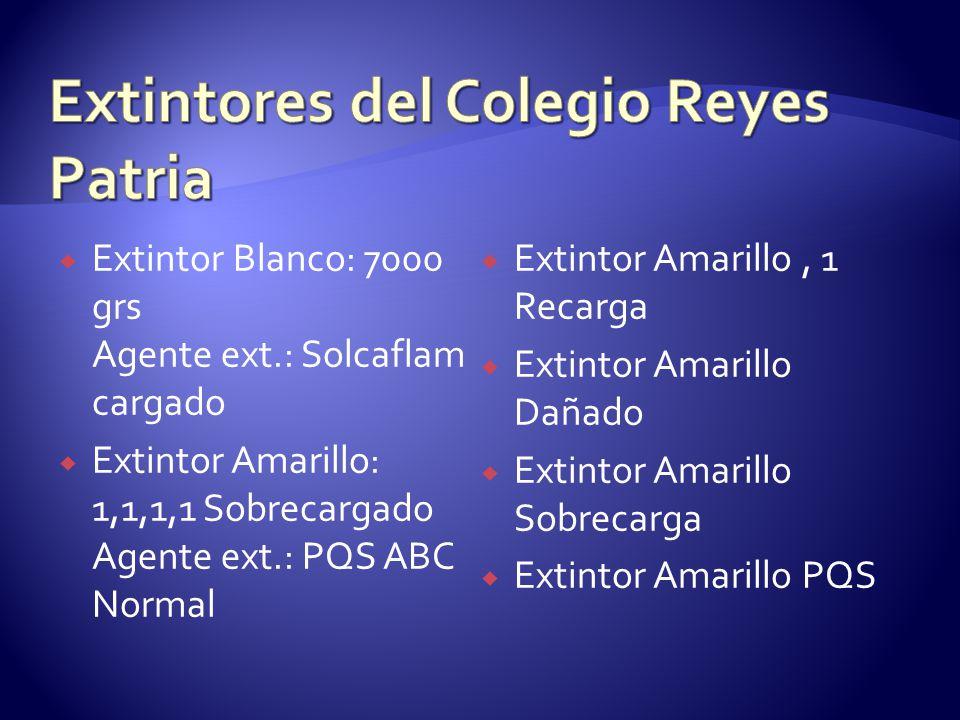 Extintores del Colegio Reyes Patria