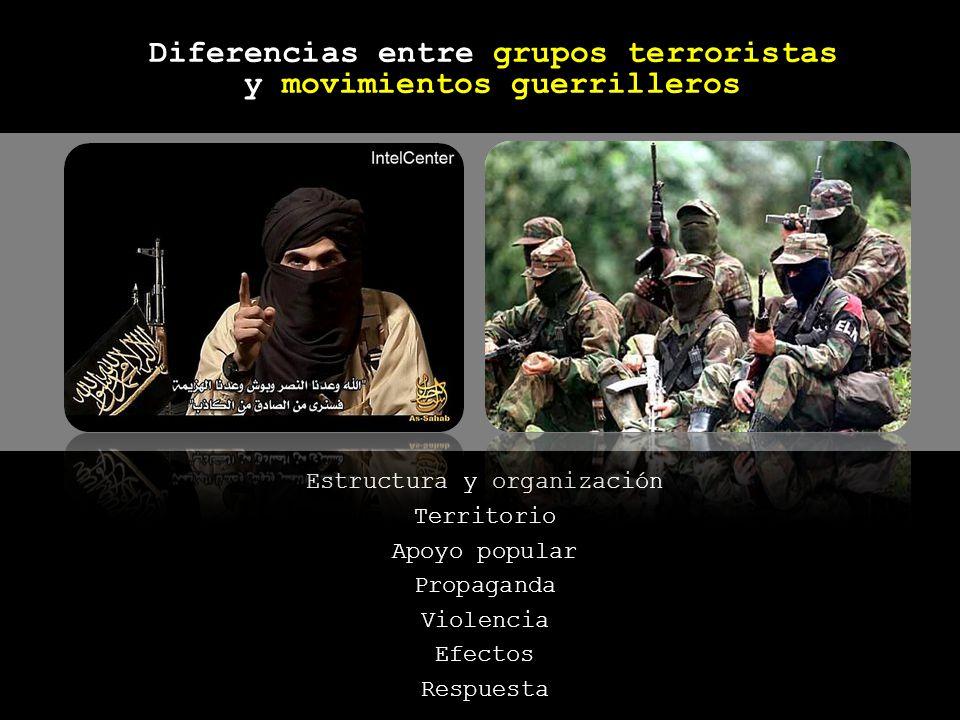 Diferencias entre grupos terroristas y movimientos guerrilleros