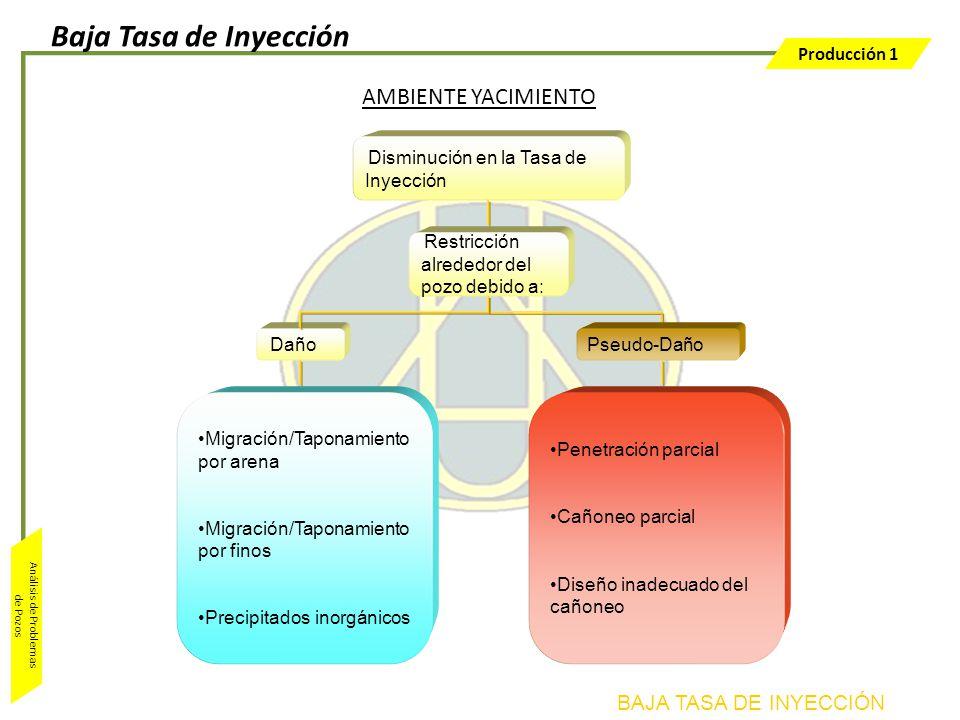 Baja Tasa de Inyección AMBIENTE YACIMIENTO BAJA TASA DE INYECCIÓN