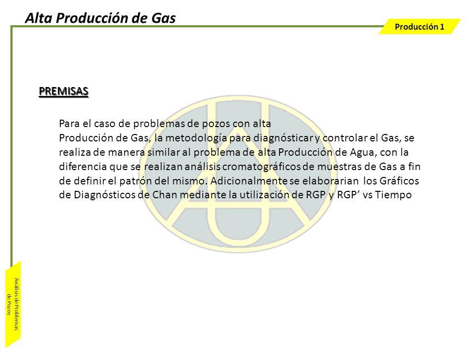 Alta Producción de Gas PREMISAS