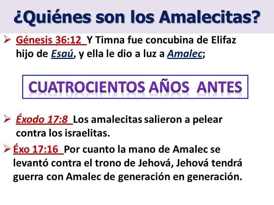¿Quiénes son los Amalecitas