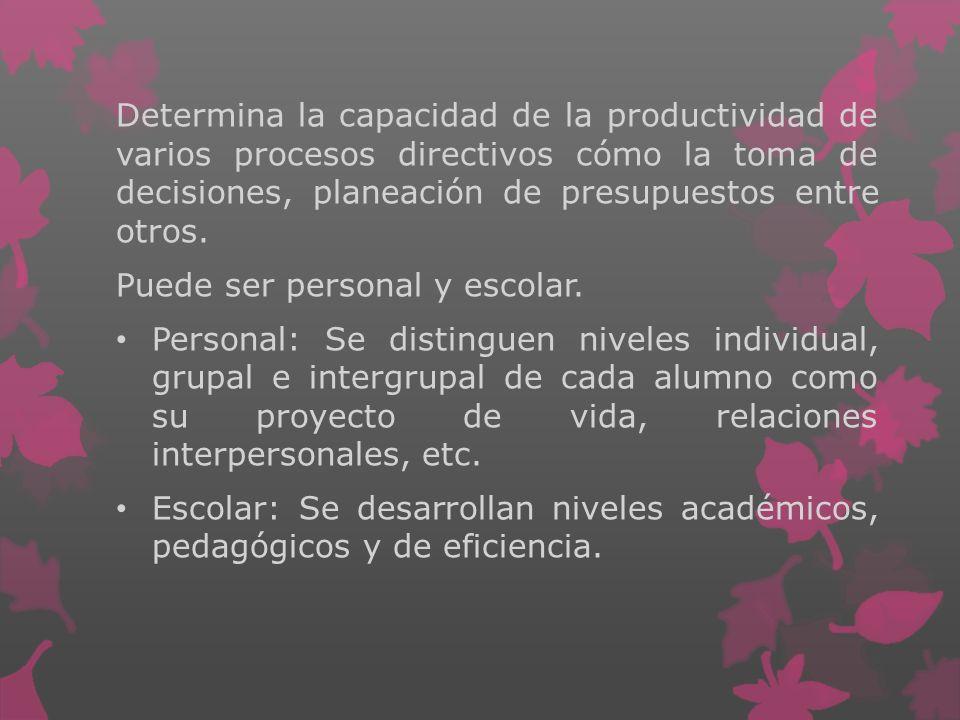 Determina la capacidad de la productividad de varios procesos directivos cómo la toma de decisiones, planeación de presupuestos entre otros.