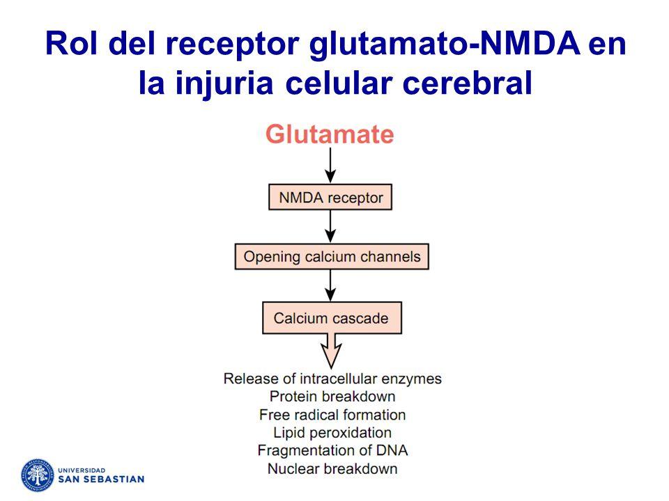 Rol del receptor glutamato-NMDA en la injuria celular cerebral