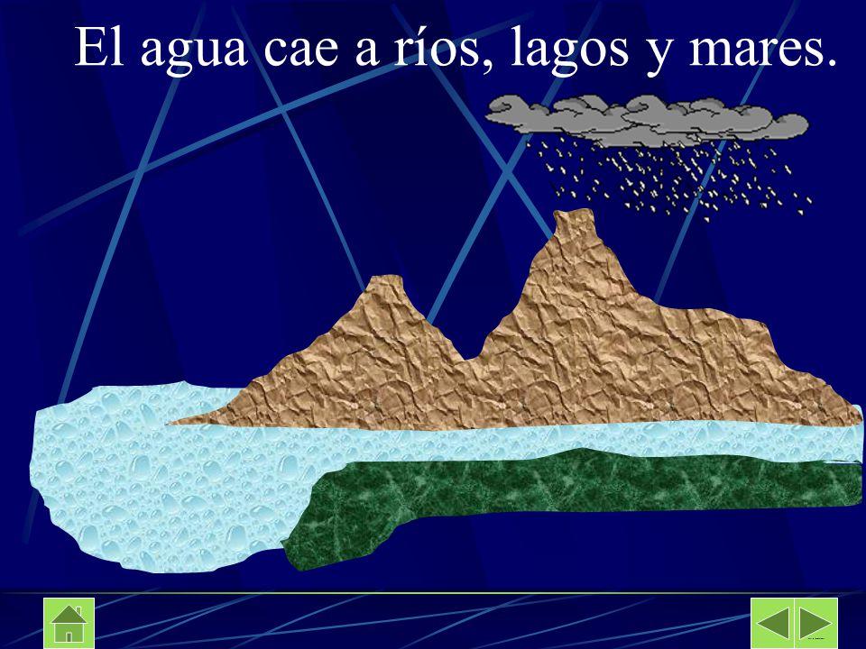 El agua cae a ríos, lagos y mares.
