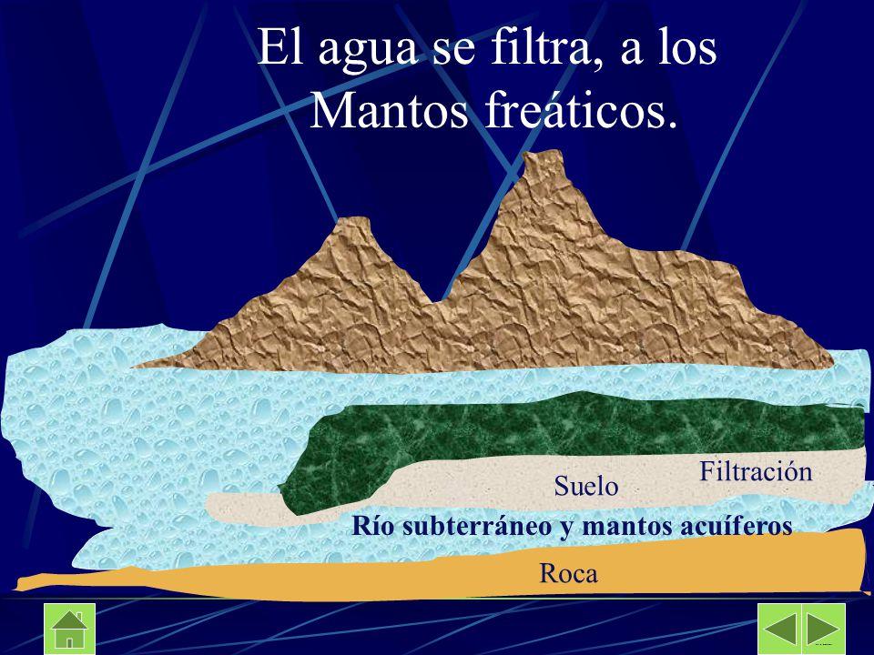 El agua se filtra, a los Mantos freáticos. Filtración Suelo