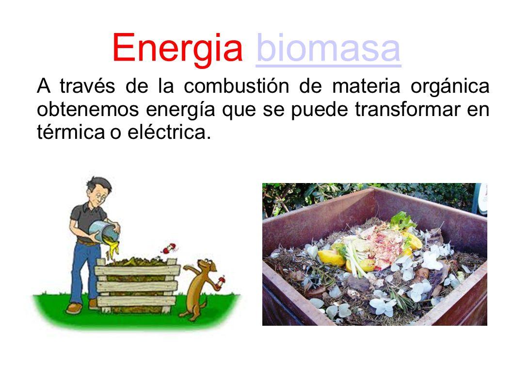 Energia biomasa A través de la combustión de materia orgánica obtenemos energía que se puede transformar en térmica o eléctrica.