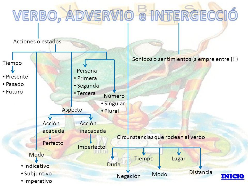 VERBO, ADVERVIO e INTERGECCIÓ