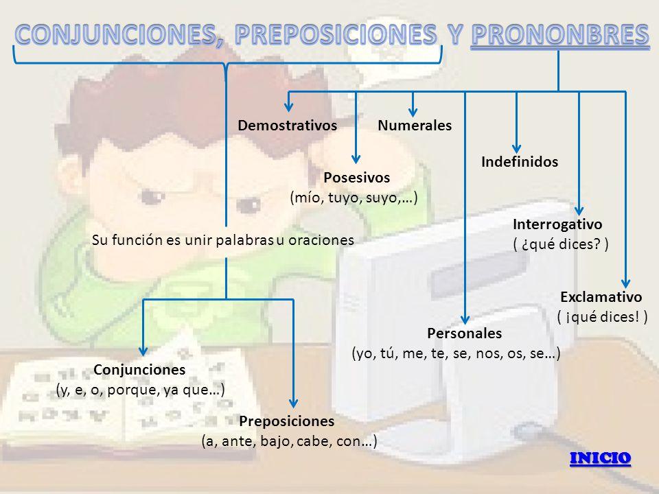 CONJUNCIONES, PREPOSICIONES Y PRONONBRES