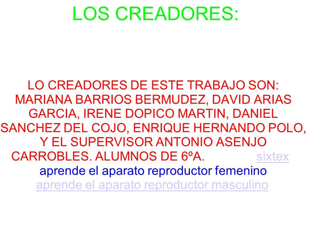 LOS CREADORES: