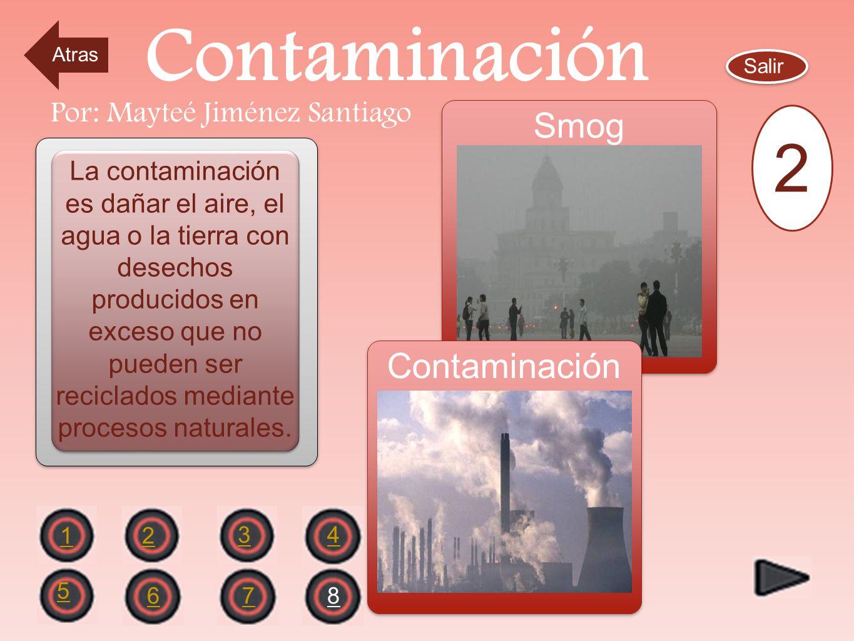 Por: Mayteé Jiménez Santiago