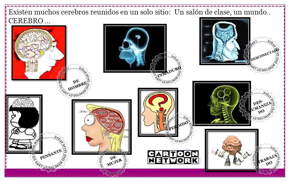 Existen muchos cerebros reunidos en un solo sitio: Un salón de clase, un mundo..