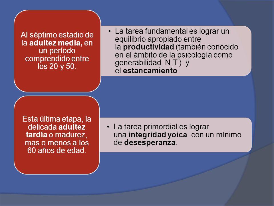 Al séptimo estadio de la adultez media, en un período comprendido entre los 20 y 50.