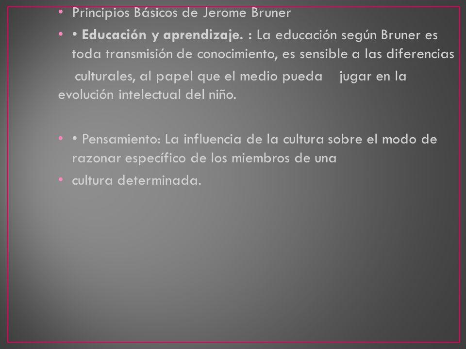 Principios Básicos de Jerome Bruner