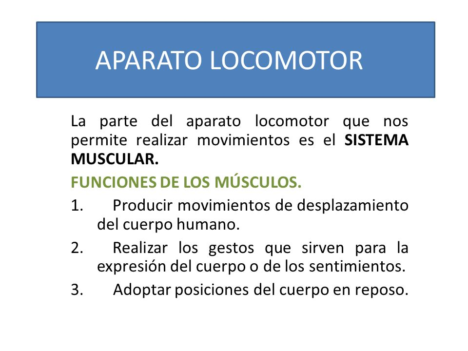 APARATO LOCOMOTOR La parte del aparato locomotor que nos permite realizar movimientos es el SISTEMA MUSCULAR.