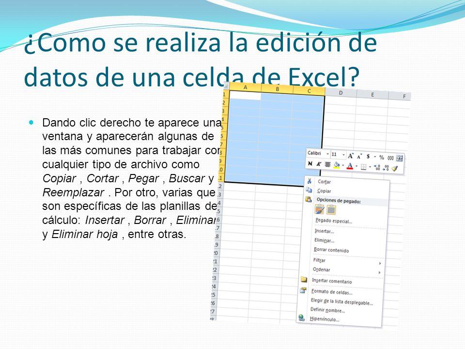¿Como se realiza la edición de datos de una celda de Excel
