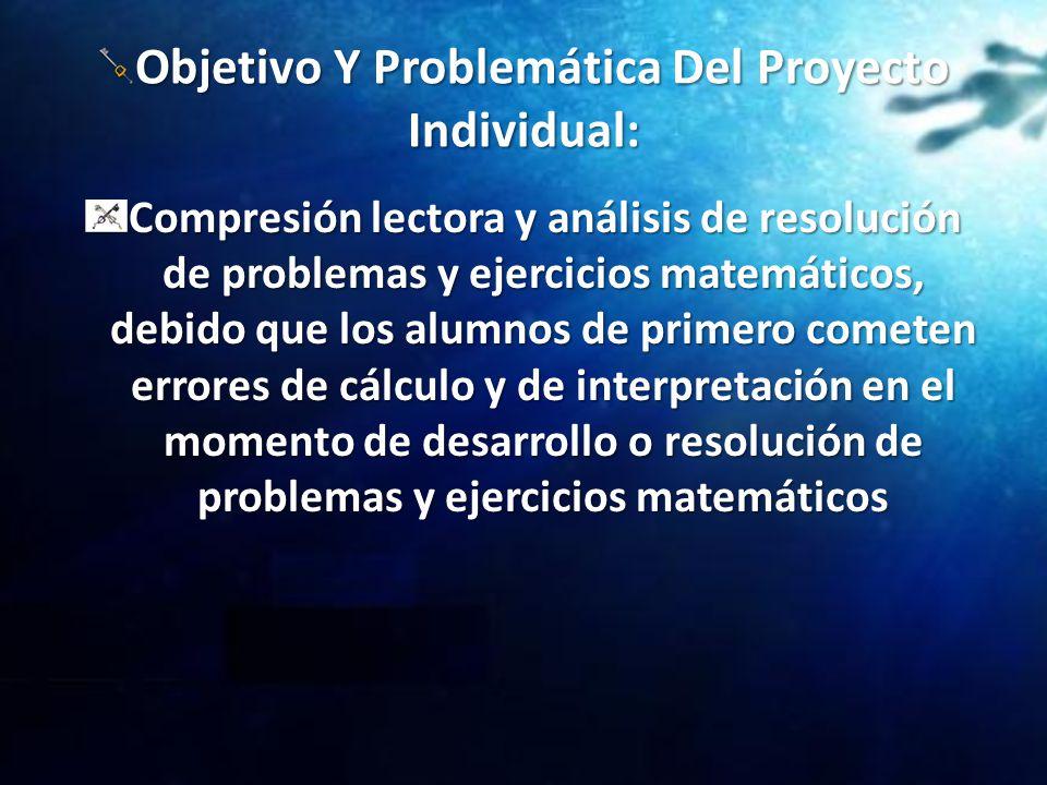 Objetivo Y Problemática Del Proyecto Individual: