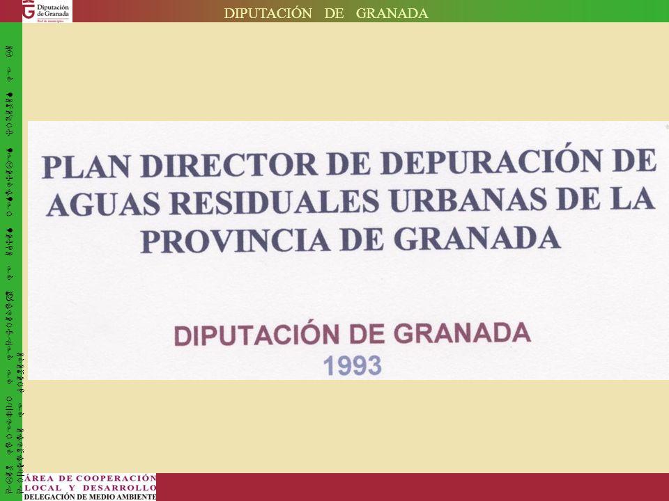 DIPUTACIÓN DE GRANADA PLAN DIRECTOR DE DEPURACIÓN DE AGUAS RESIDUALES URBANAS DE LA PROVINCIA DE GRANADA.