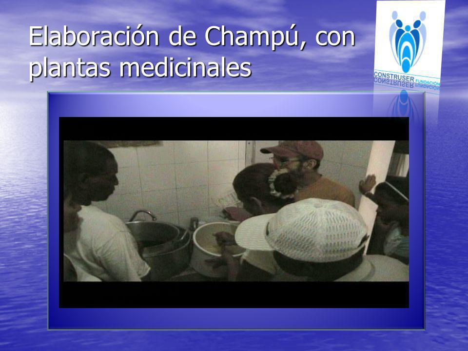 Elaboración de Champú, con plantas medicinales