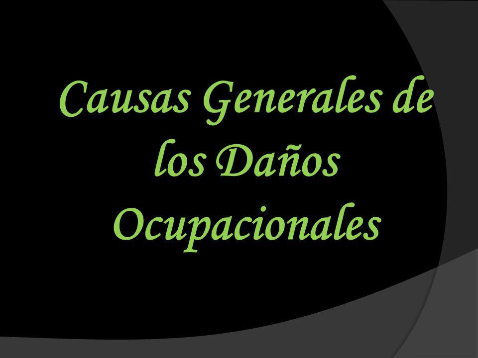 Causas Generales de los Daños Ocupacionales