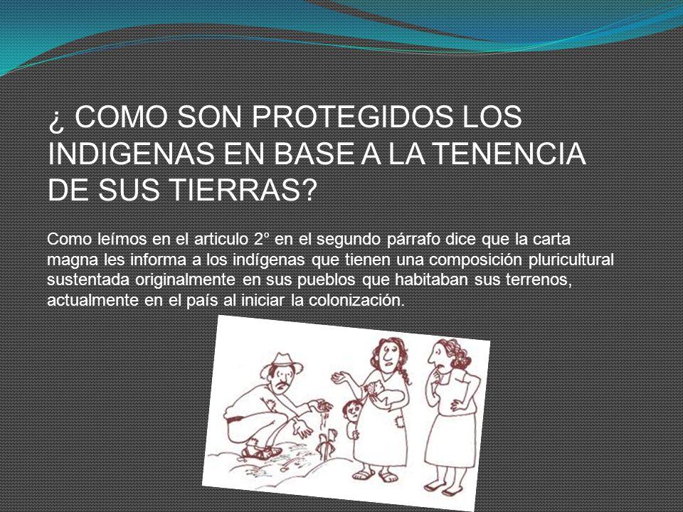 ¿ COMO SON PROTEGIDOS LOS INDIGENAS EN BASE A LA TENENCIA DE SUS TIERRAS