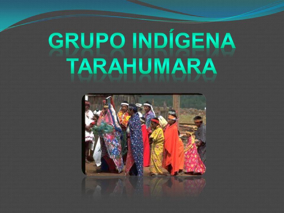 Grupo indígena tarahumara
