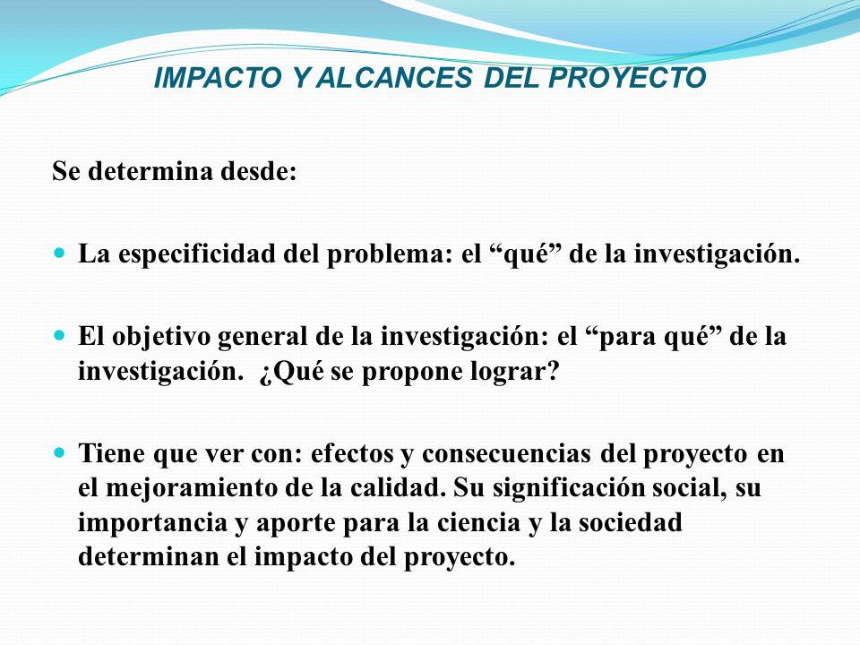 IMPACTO Y ALCANCES DEL PROYECTO