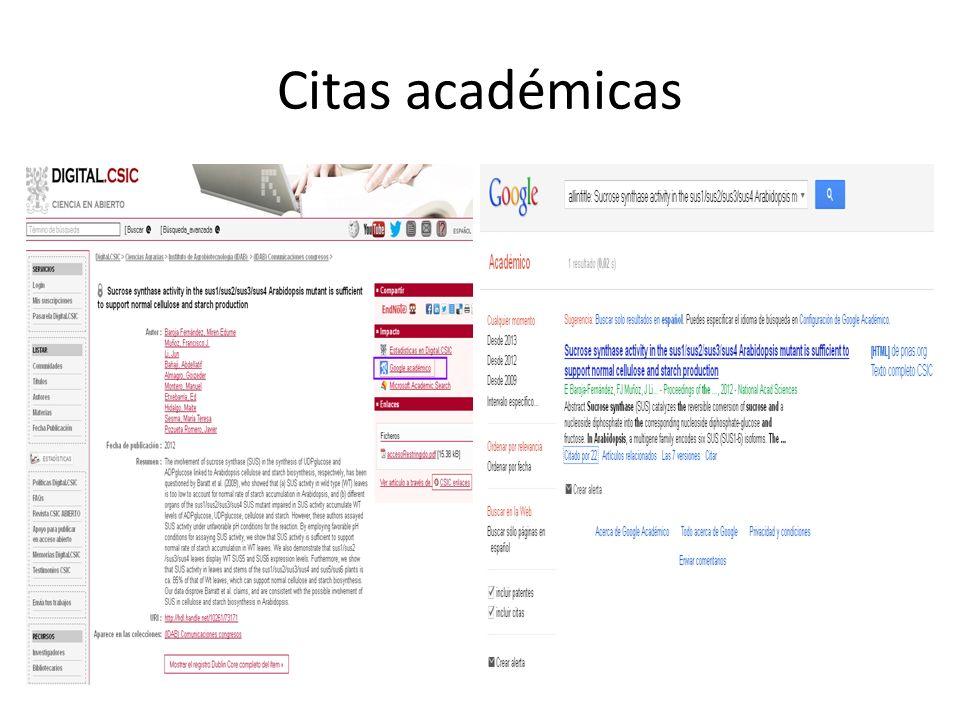 Citas académicas