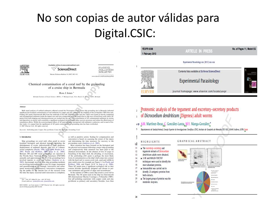 No son copias de autor válidas para Digital.CSIC:
