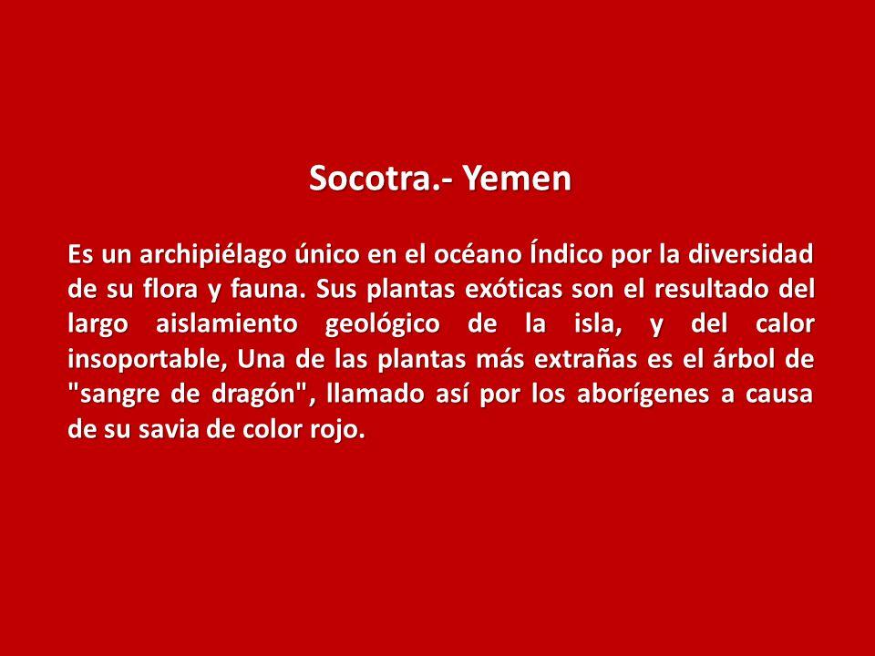 Socotra.- Yemen