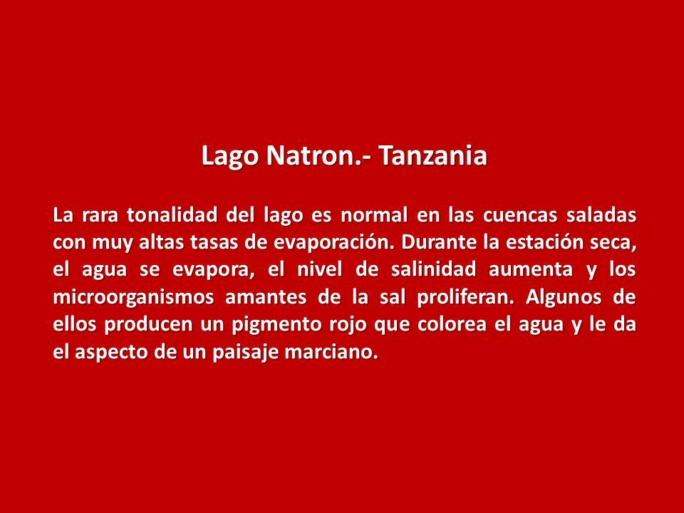 Lago Natron.- Tanzania