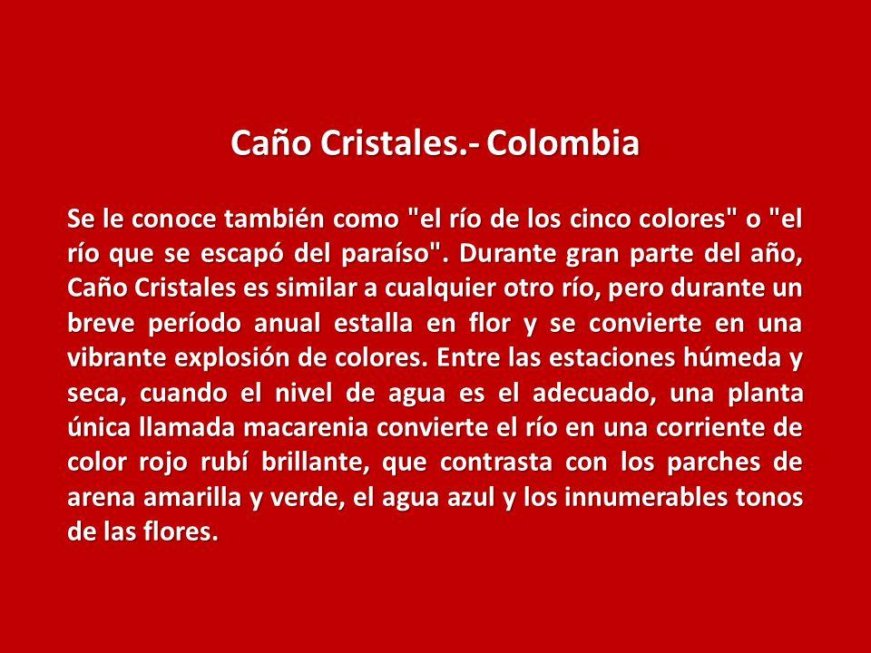 Caño Cristales.- Colombia
