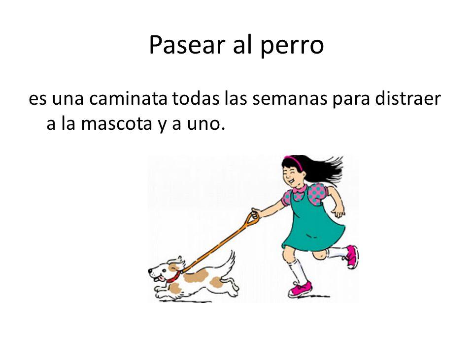 Pasear al perro es una caminata todas las semanas para distraer a la mascota y a uno.