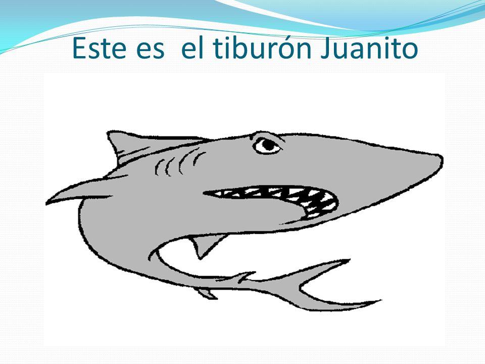 Este es el tiburón Juanito