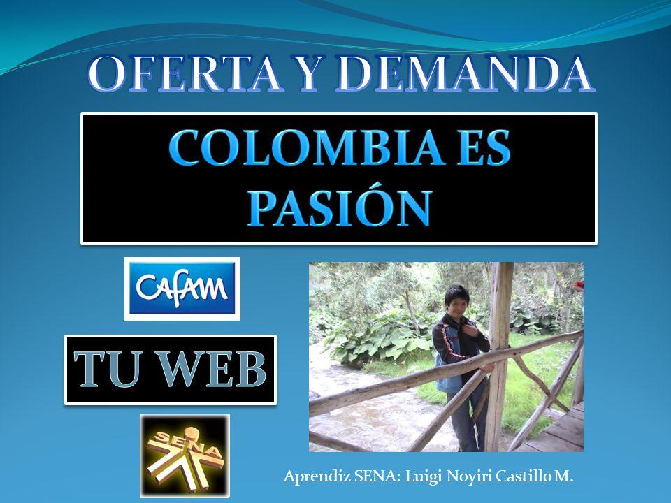 OFERTA Y DEMANDA COLOMBIA ES PASIÓN TU WEB