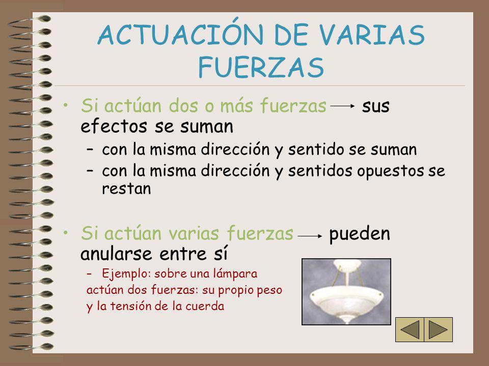 ACTUACIÓN DE VARIAS FUERZAS