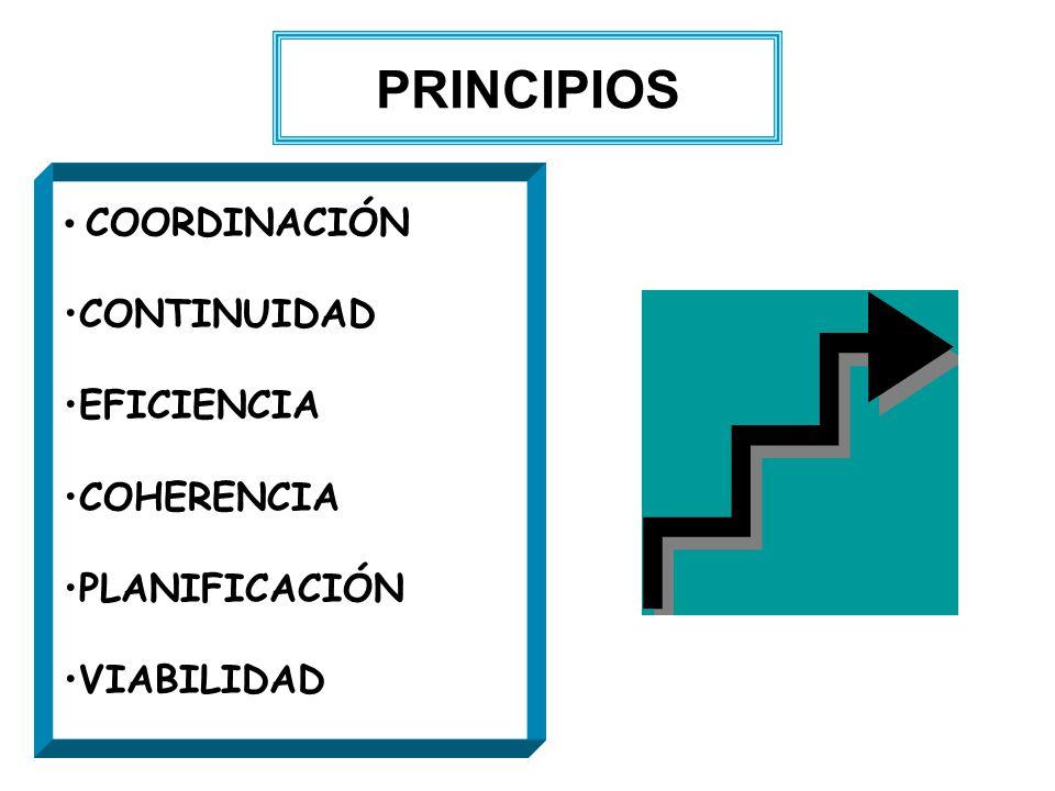 PRINCIPIOS CONTINUIDAD EFICIENCIA COHERENCIA PLANIFICACIÓN VIABILIDAD