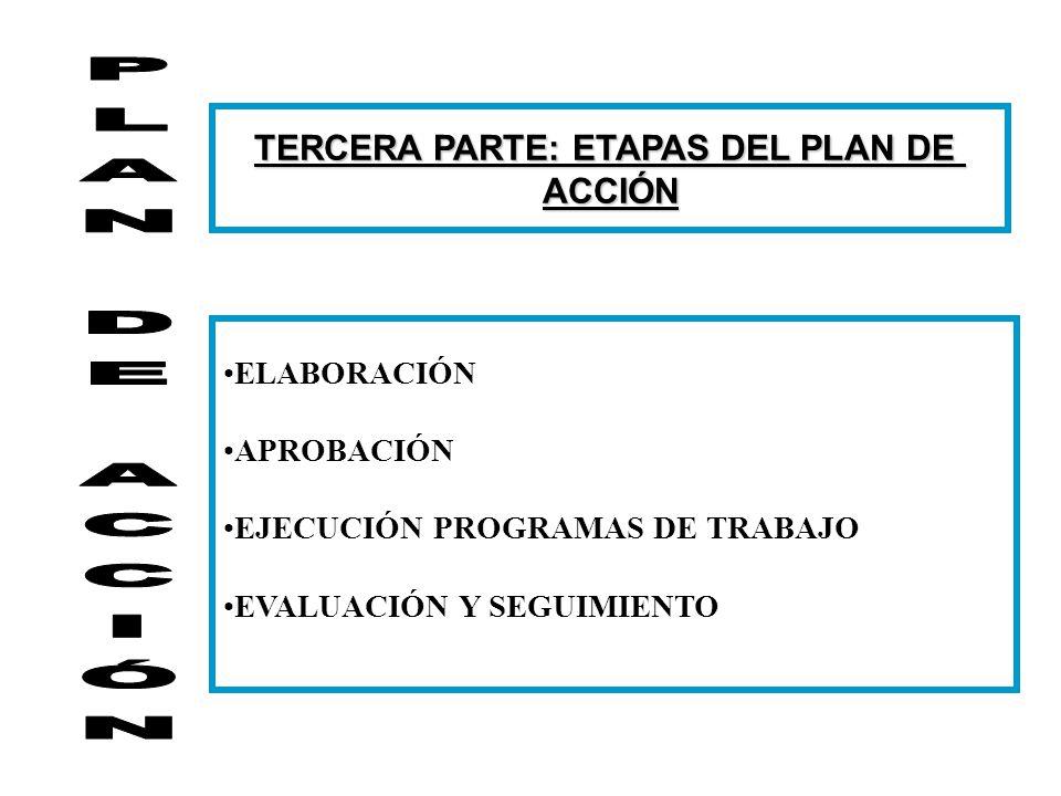 TERCERA PARTE: ETAPAS DEL PLAN DE