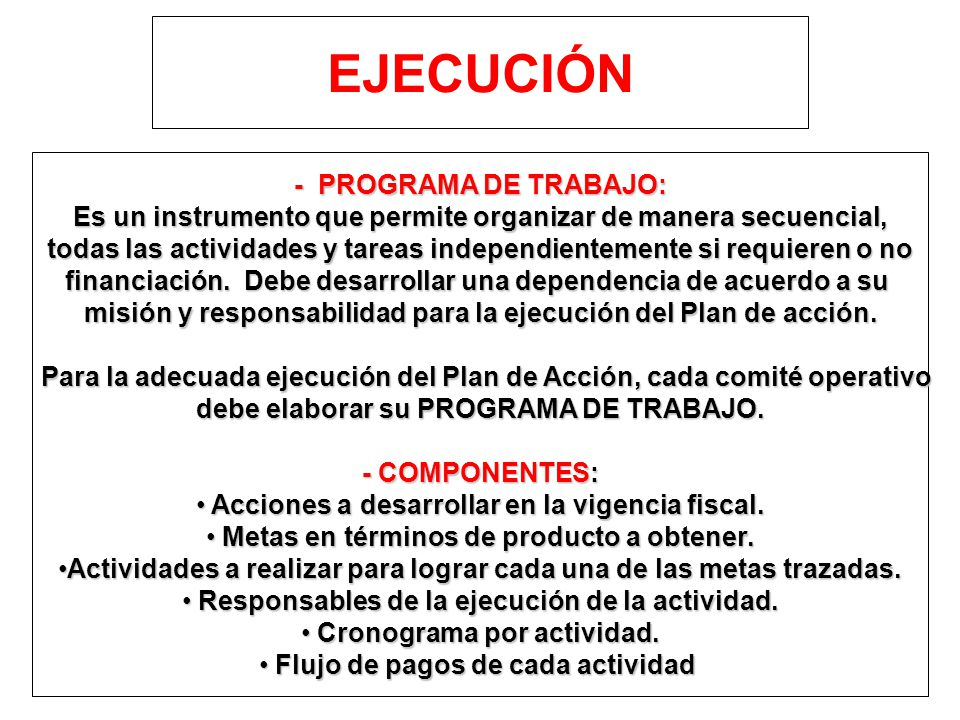 EJECUCIÓN - PROGRAMA DE TRABAJO: