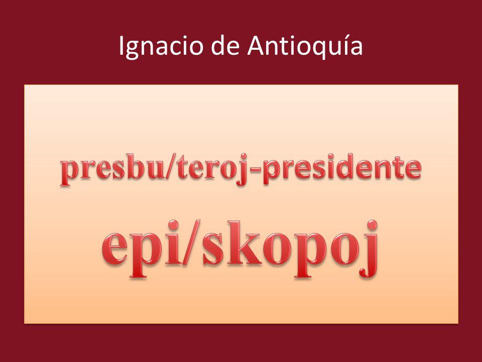 presbu/teroj-presidente
