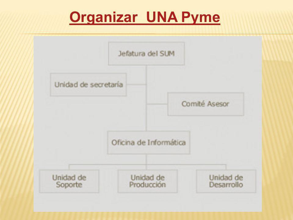 Organizar UNA Pyme