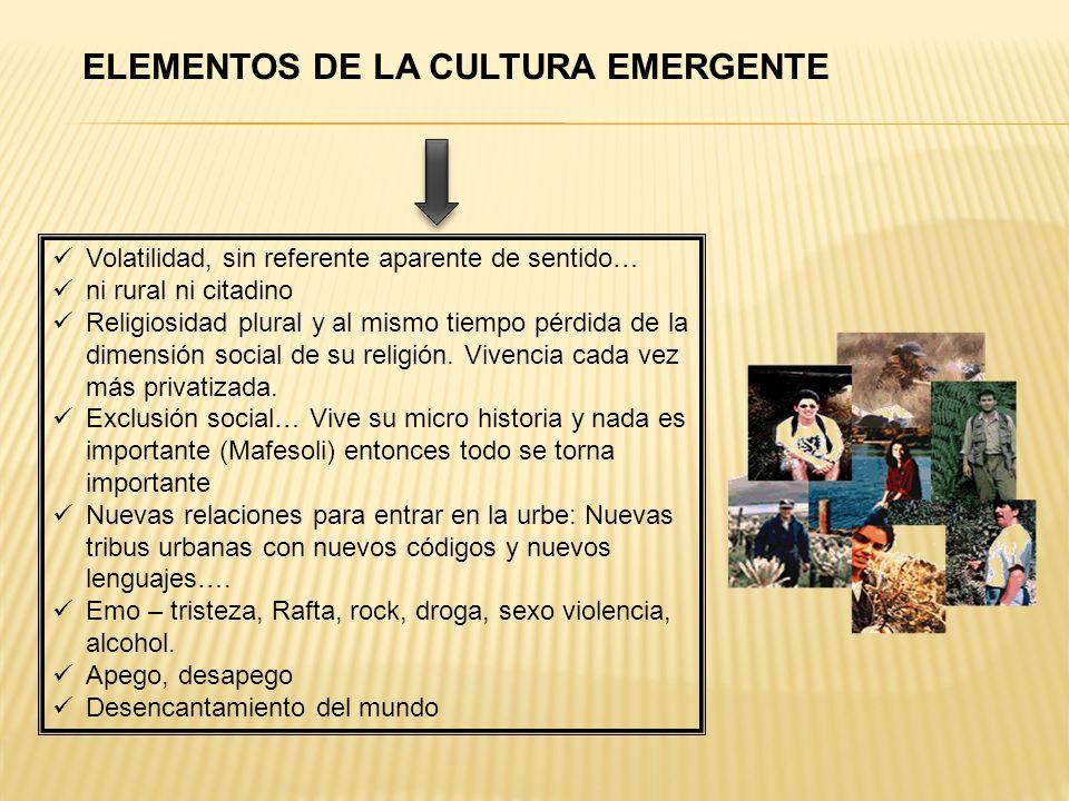 ELEMENTOS DE LA CULTURA EMERGENTE