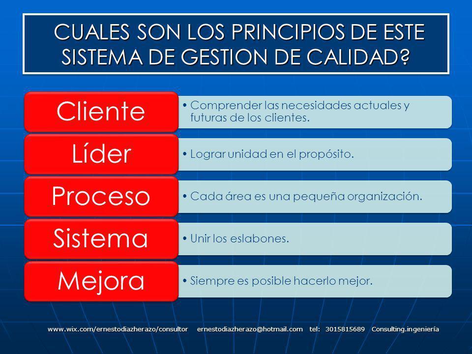 CUALES SON LOS PRINCIPIOS DE ESTE SISTEMA DE GESTION DE CALIDAD