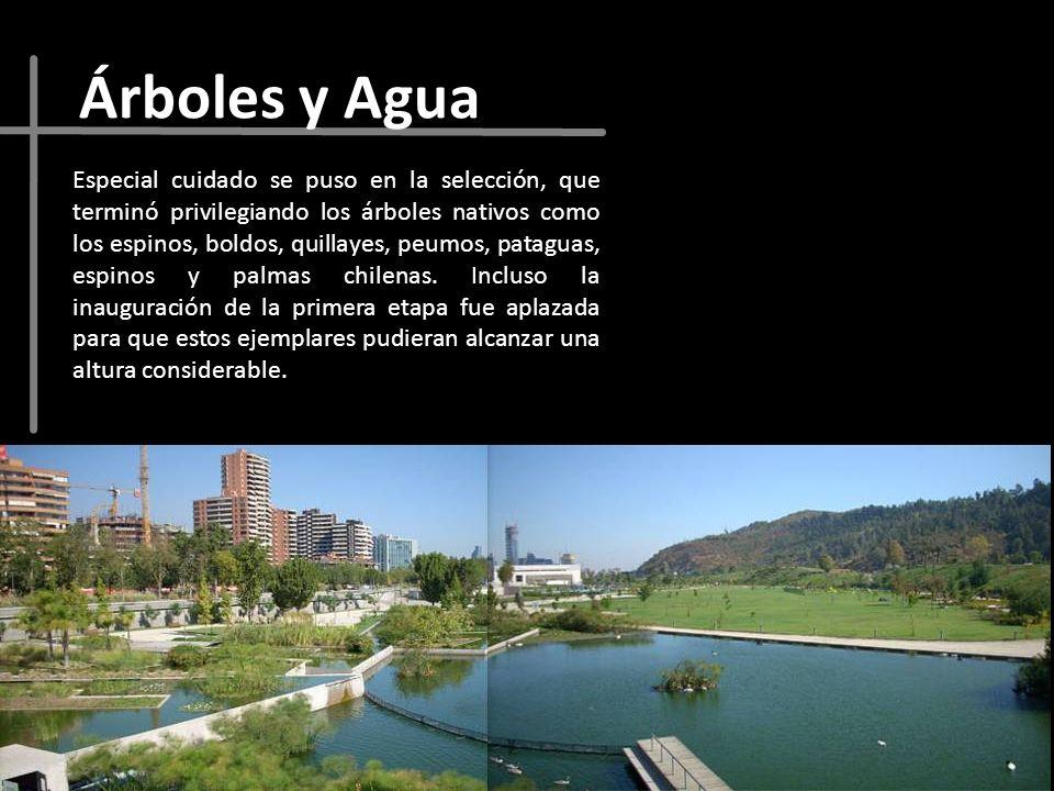 Árboles y Agua