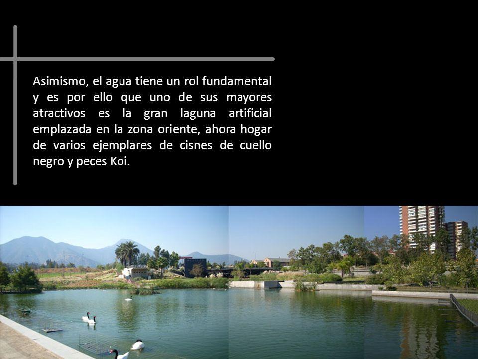 Asimismo, el agua tiene un rol fundamental y es por ello que uno de sus mayores atractivos es la gran laguna artificial emplazada en la zona oriente, ahora hogar de varios ejemplares de cisnes de cuello negro y peces Koi.