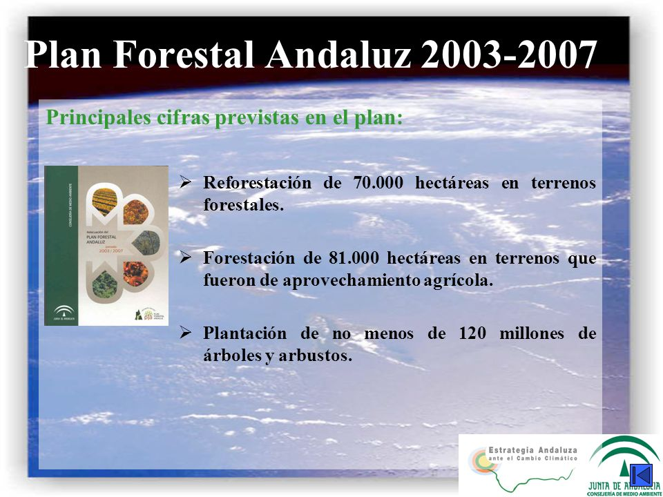 Plan Forestal Andaluz 2003-2007