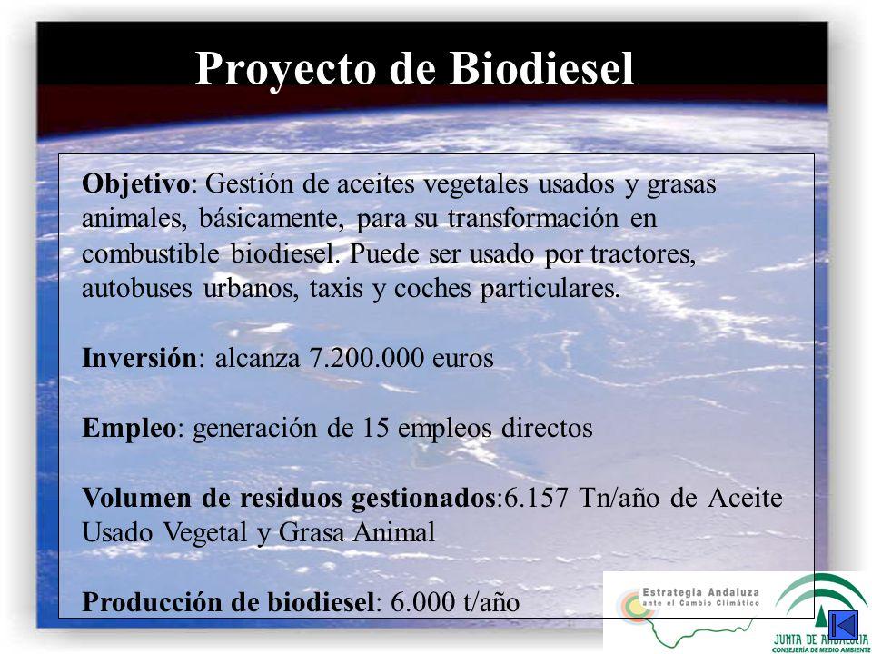 Proyecto de Biodiesel