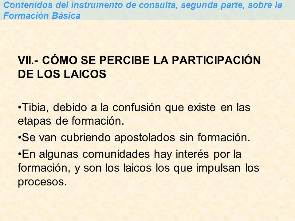 VII.- CÓMO SE PERCIBE LA PARTICIPACIÓN DE LOS LAICOS
