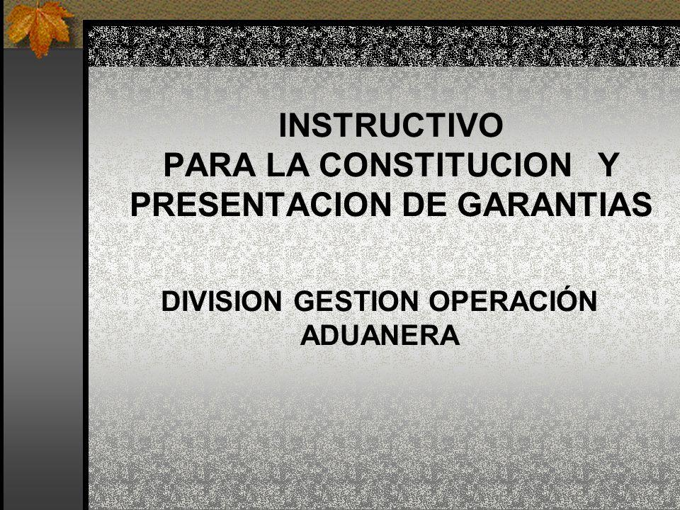 INSTRUCTIVO PARA LA CONSTITUCION Y PRESENTACION DE GARANTIAS