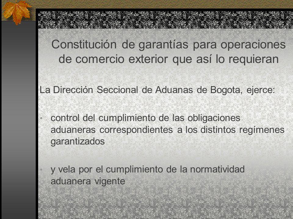 Constitución de garantías para operaciones de comercio exterior que así lo requieran